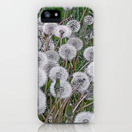 SEEDS OF DANDELION iPhone Case