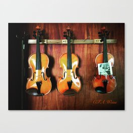 Einstein's Violins Canvas Print