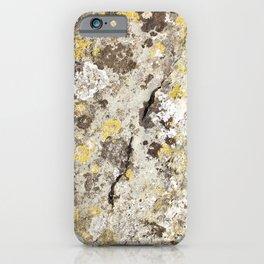 Lichen on The Rollright Stones iPhone Case