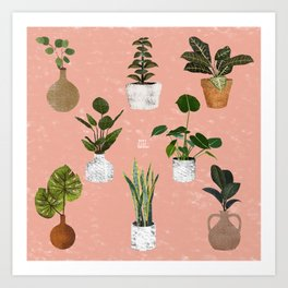 Plants Collection Art Print
