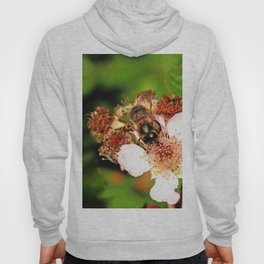 Honey Bee on a Blackberry flower Hoody