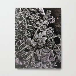 Frozen leaves in black and white Metal Print