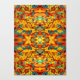 Abstract Fur Kaleidoscope Canvas Print