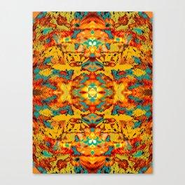 Abstract Fur Kaleidoscope Canvas Print