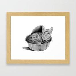 Bengal Kitten in Kitchen Bowl, Pencil Art Framed Art Print