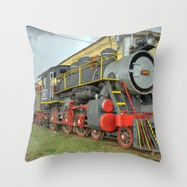 Trinidad Steam Throw Pillow