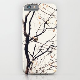 House Sparrows in Tree Branches Stylized Minimalist Nature iPhone Case