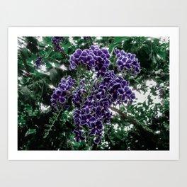 Cascading Flowers Art Print