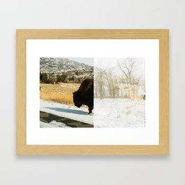 Your Friendly Neighborhood Bison Framed Art Print