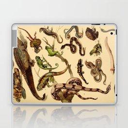 Reptiles Vintage Scientific Illustration Educational Diagrams Popular History of Animals Laptop & iPad Skin