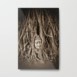 Buddha head in a Banyan Tree in Ayutthaya, Thailand Metal Print