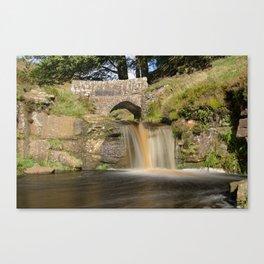 Panniers pool 1 Canvas Print