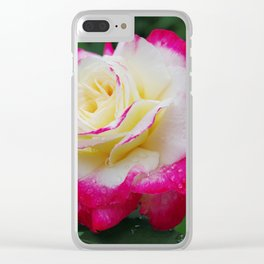 Double Delight Rose - Red and cream beauty Clear iPhone Case