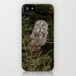 Pine Prince iPhone Case
