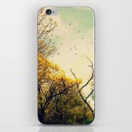 Beautiful morning iPhone Skin