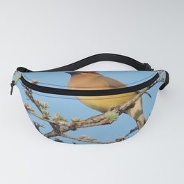 Cedar Waxwing Faces Sunset Fanny Pack