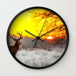 Deer in morning sun Wall Clock