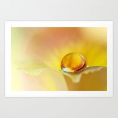 Pretty Petal Drop Art Print