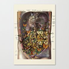 feeling fluttery anatomical collage by bedelgeuse Canvas Print