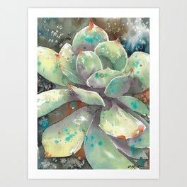 Salted Succulent Art Print