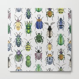 Colourful Bugs Metal Print