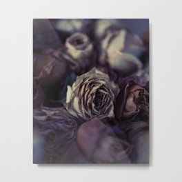 Dried Roses #2 Metal Print