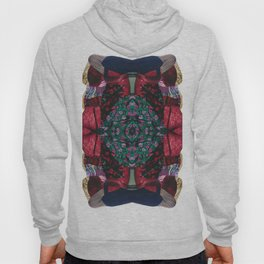 red lace - a modern, colorful collage Hoody