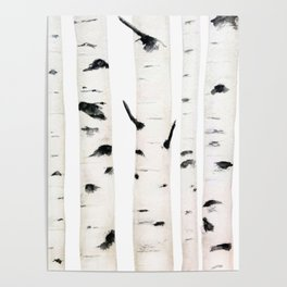 birch  watercolor Poster