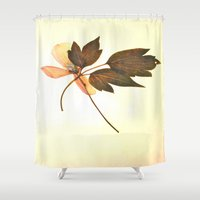 montana Shower Curtains featuring Clematis Montana... by  from a garden...