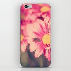 Pink Retro  iPhone & iPod Skin