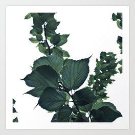 BLUE-GREEN Art Print