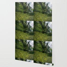 Budapest Green  Wallpaper