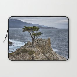 A Cypress Tree Laptop Sleeve