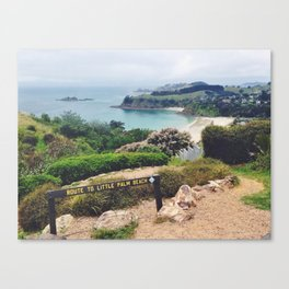 Waiheke Island View Canvas Print