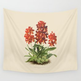 R. Warner & B.S. Williams - The Orchid Album - vol 01 - plate 004 Wall Tapestry