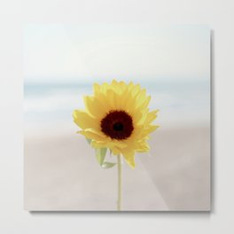 Daylight flower Metal Print
