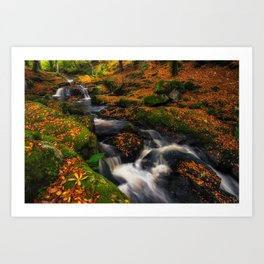 Cloghleagh River in Wicklow Mountains - Ireland (RR249) Art Print