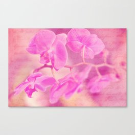 Scripted Orchid Canvas Print