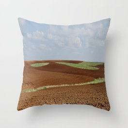 Natural Colors (1) Throw Pillow