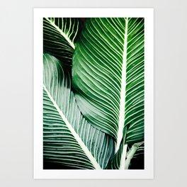 Palm-Tree Breeze Art Print
