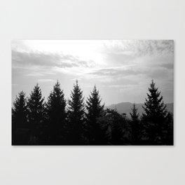 Transylvanian Pines Canvas Print
