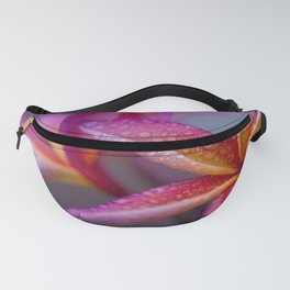Windows into Nature Fanny Pack