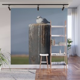 Flight distance, I don´t need... Wall Mural