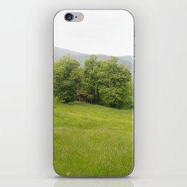 Hiding iPhone Skin