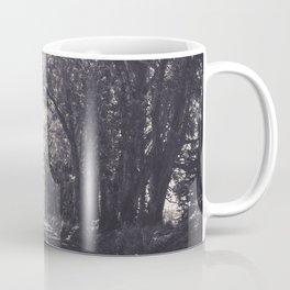 Tunnel of Trees - Kauai, Hawaii Coffee Mug
