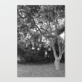 Tree Houses in Seabrook Texas Canvas Print