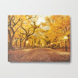 New York City Autumn Metal Print