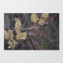 Cooler Canvas Print
