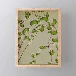 Naturalist Fern Framed Mini Art Print