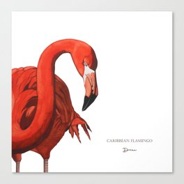 Caribbean Flamingo - DEAU Canvas Print